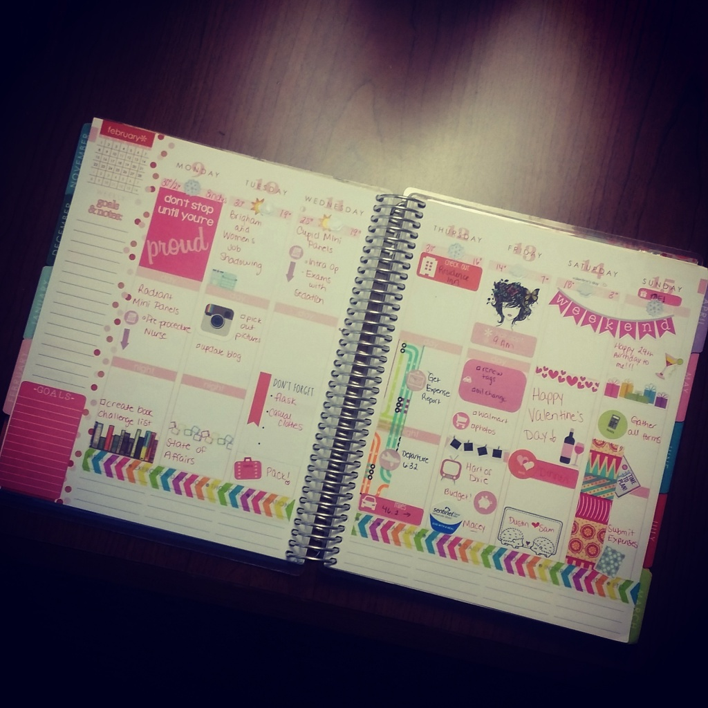 A layout for me in February in my Erin Condren.